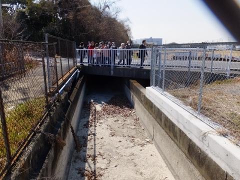 相模川左岸幹線用水路と居合橋