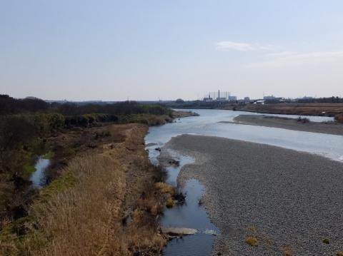 戸沢橋より相模川下流を望む