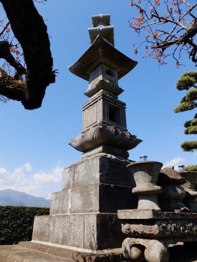 普済寺の多宝塔