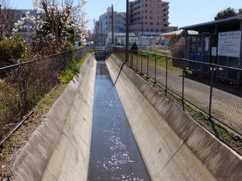 相模川右岸幹線用水路(西部用水)
