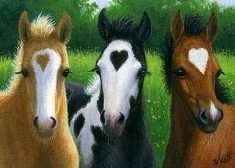 heart_horses.jpg