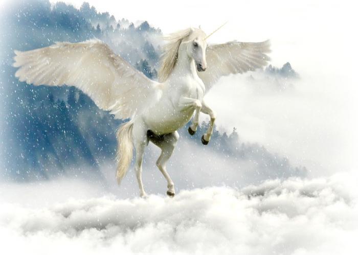 unicorn-_convert_20181231215920.jpg