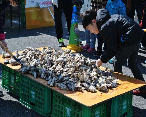 牡蠣のすくい取り