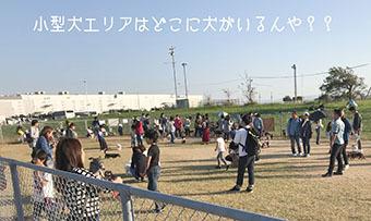 IMG_2624.jpg