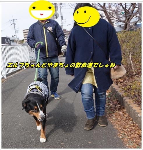 2019-1帝くん2