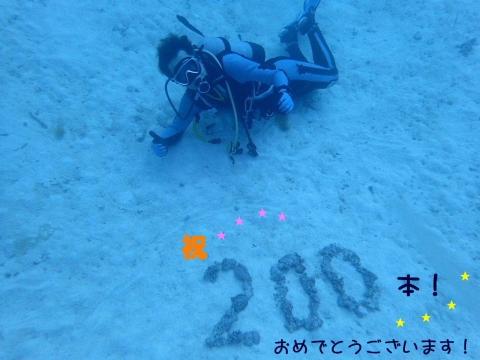 2019-02260002.jpg