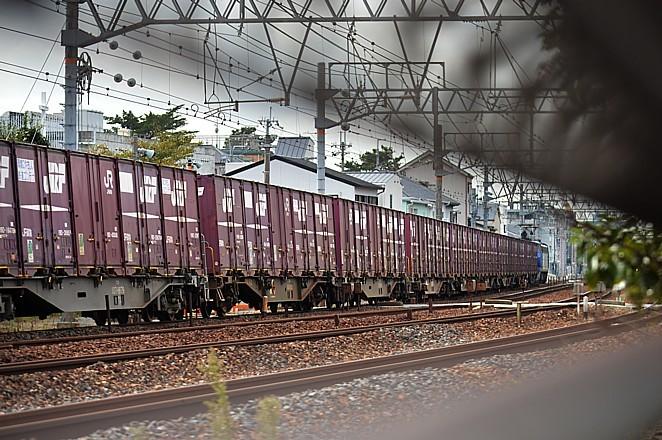 DSC_4375s.jpg