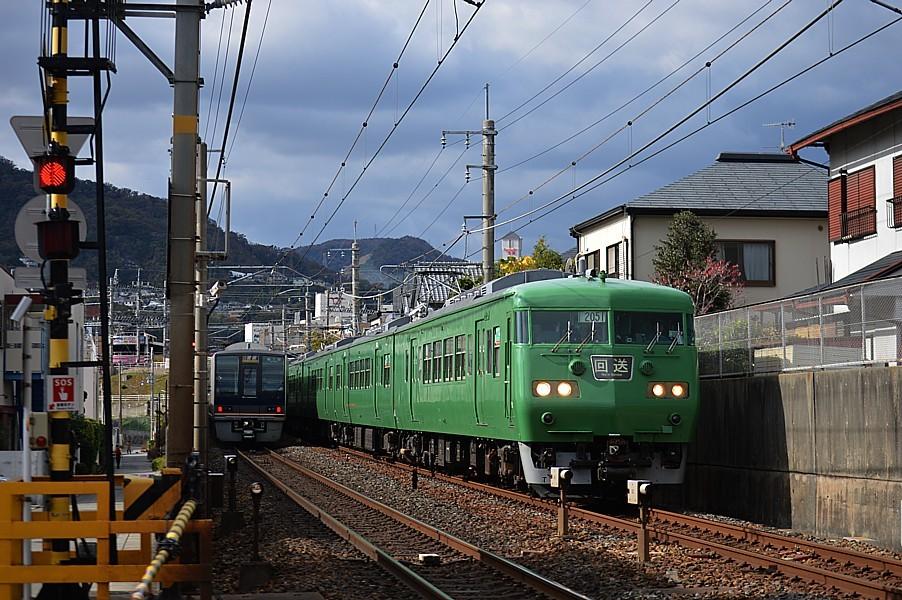 DSC_6021s.jpg