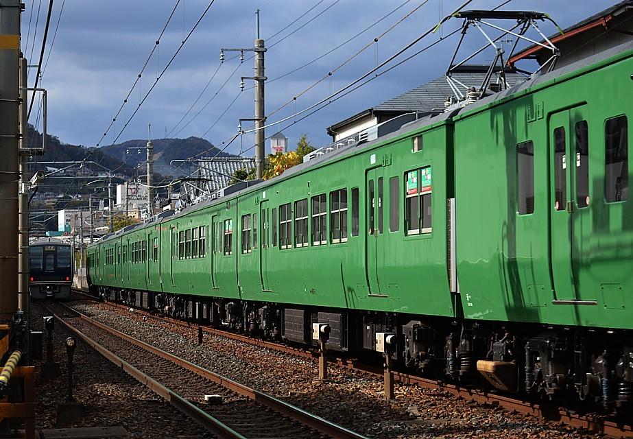 DSC_6024s.jpg