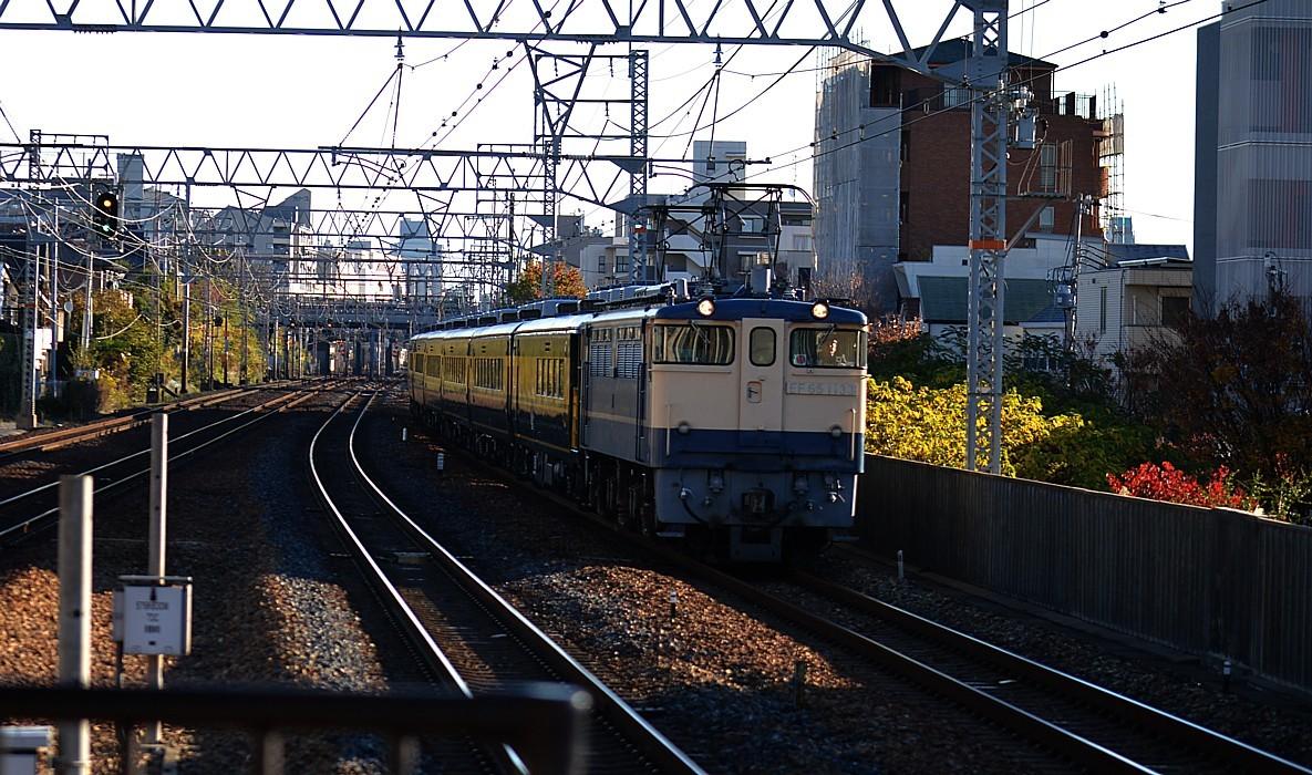 DSC_6067s.jpg