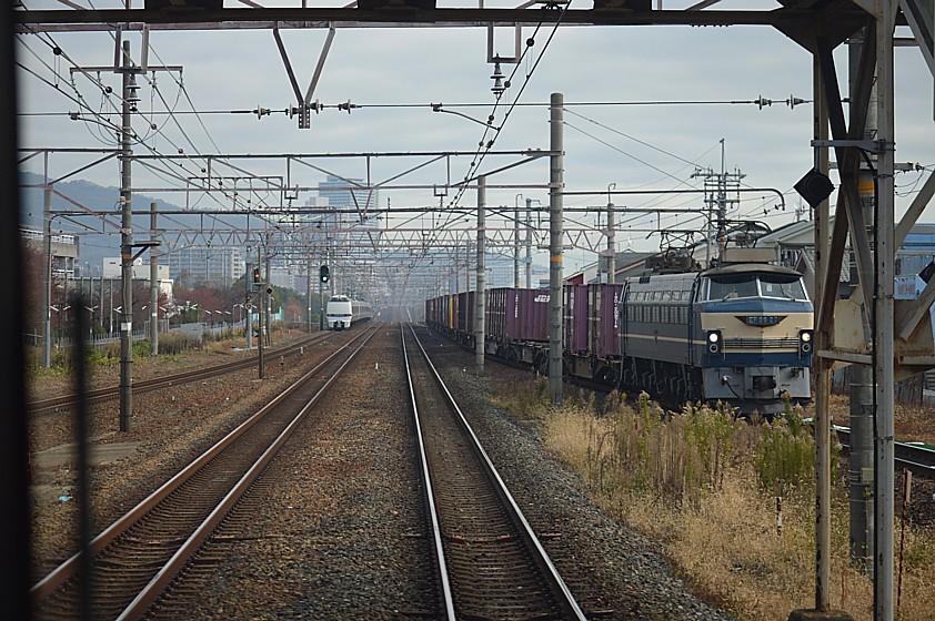 DSC_6101q.jpg