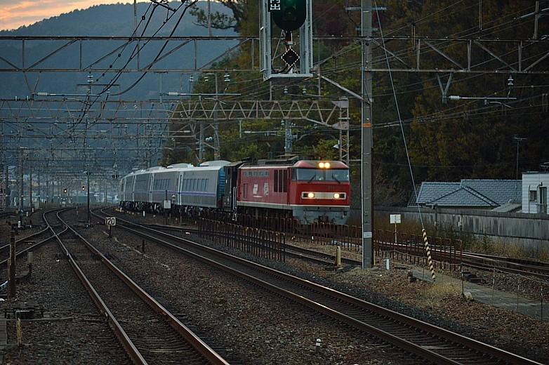 DSC_6479p.jpg