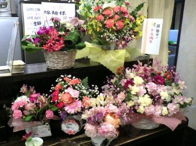 綿麺 15周年のお祝いの花たち(2月15日撮影)