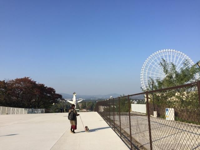 大阪 万博 2025