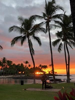 s-hawaii1.jpg