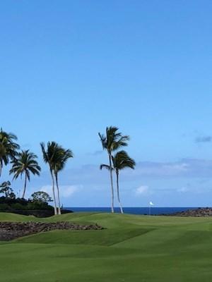 s-hawaii2.jpg