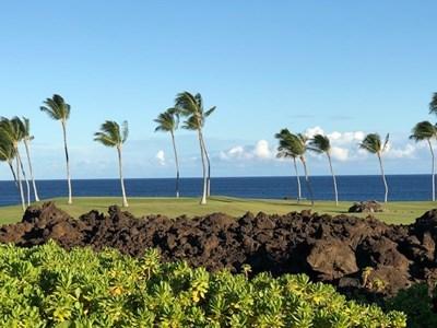 s-hawaii4.jpg