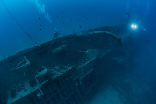念願の沈船ダイビング