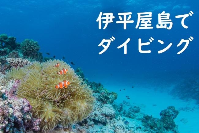 伊平屋島が好き