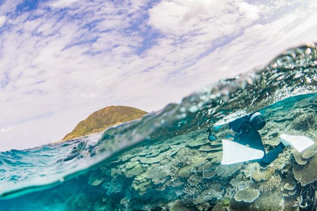 伊平屋島のサンゴ礁⑤
