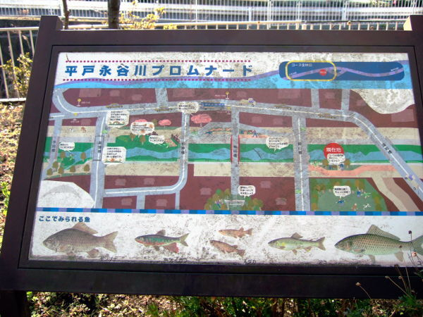 平戸遊歩道04