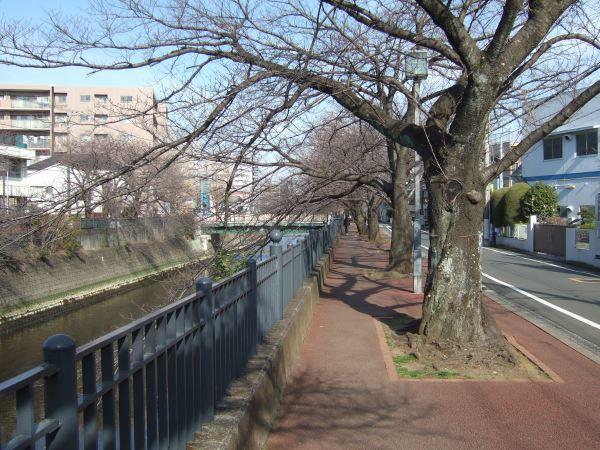 桜木町方面04