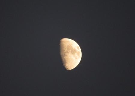 麻生池夕方 2018-11-17 038