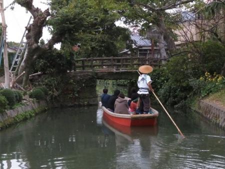 ドンコ舟菊 2018-11-16 023