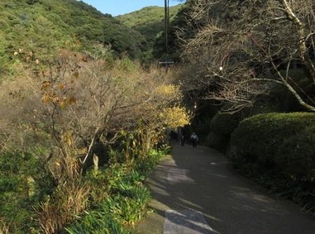 清水寺へ 2019-01-02 084