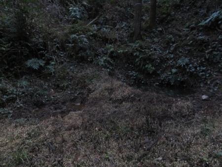 源太窯より登る 2019-01-23 052