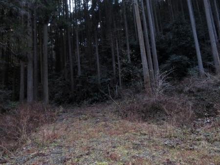 源太窯より登る 2019-01-23 078