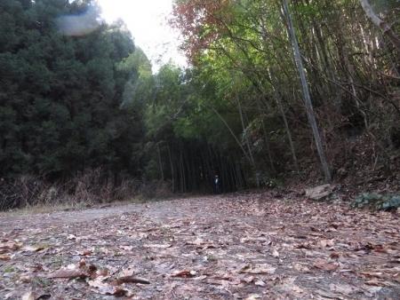 源太窯より登る 2019-01-23 074