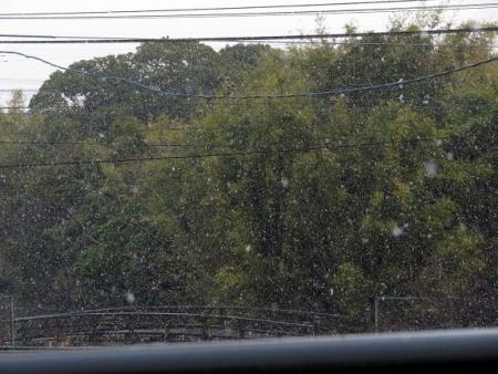 初雪 2019-01-26 001