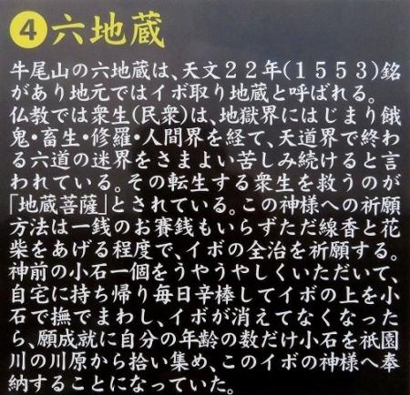 再度梅見牛尾梅林 2019-01-30 041