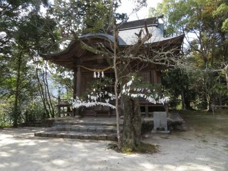 星野茶の文化館 2019-02-13 027