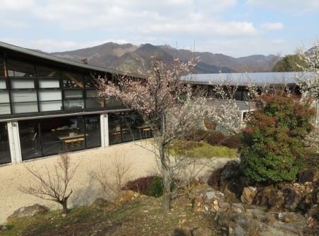 星野茶の文化館 2019-02-13 091