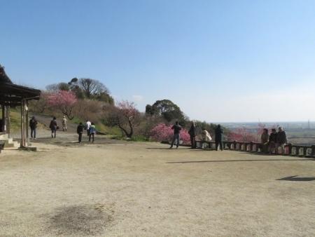 多久公園・牛尾梅 2019-02-17 085