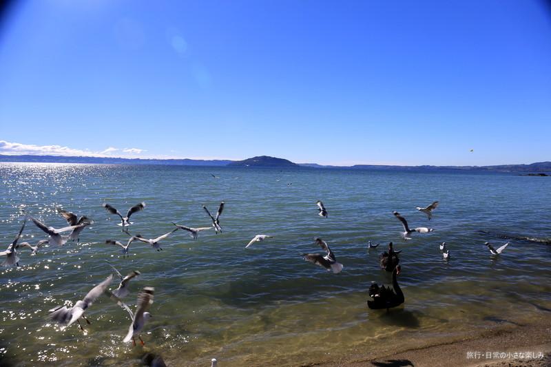 トロルア湖 ニュージランド