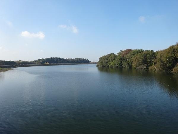181110高滝湖 (6)