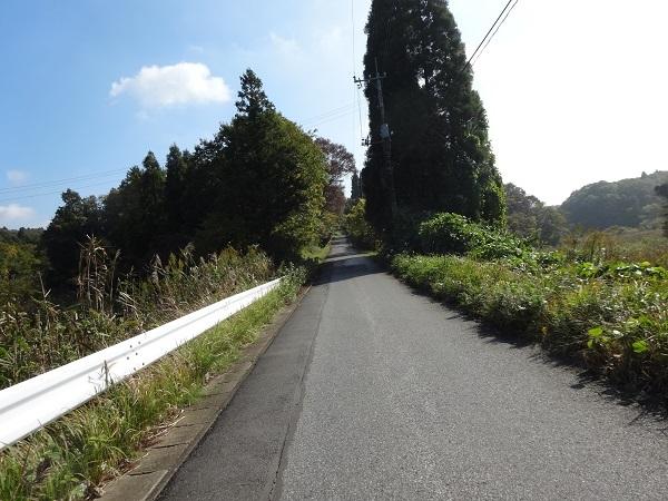 181110高滝湖 (9)
