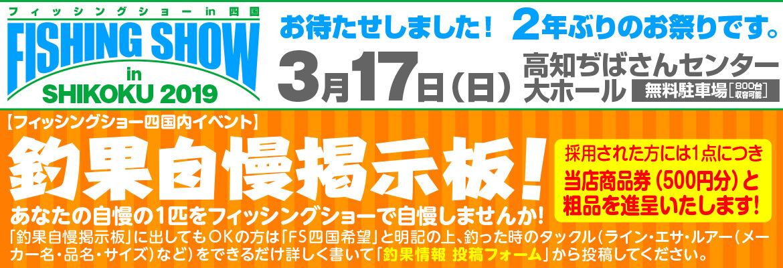 3-17FSS-3.jpg