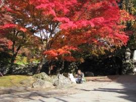 紅葉の懐古園IMG_8039
