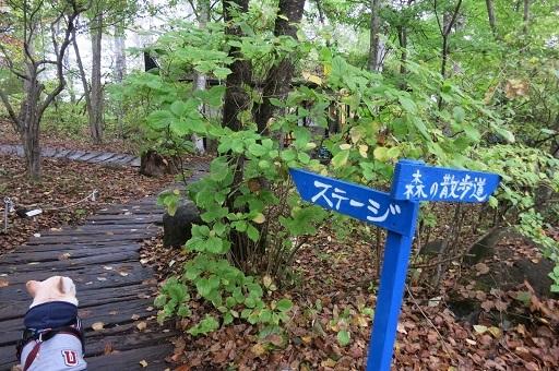 10-15倶楽部散歩2