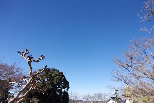 03-21青空へ