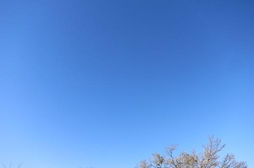 03-21澄み渡る青空へ