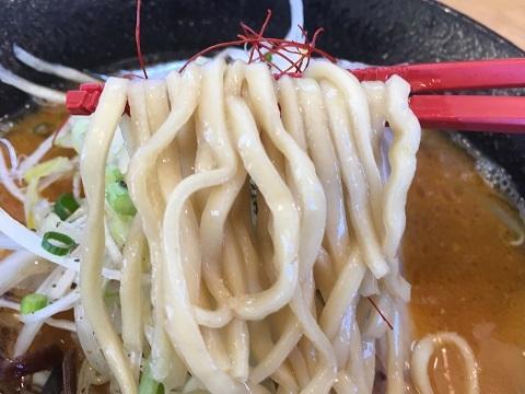濃厚味噌豚骨麺