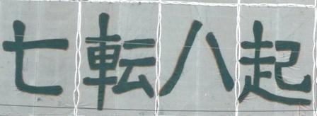 P1000894.jpg