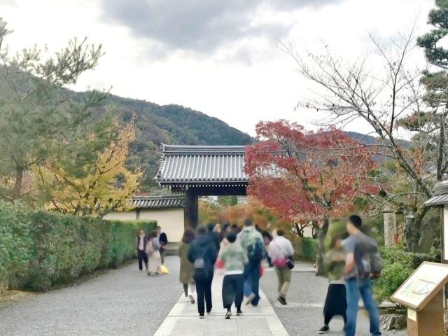 京都 嵐山 (4)