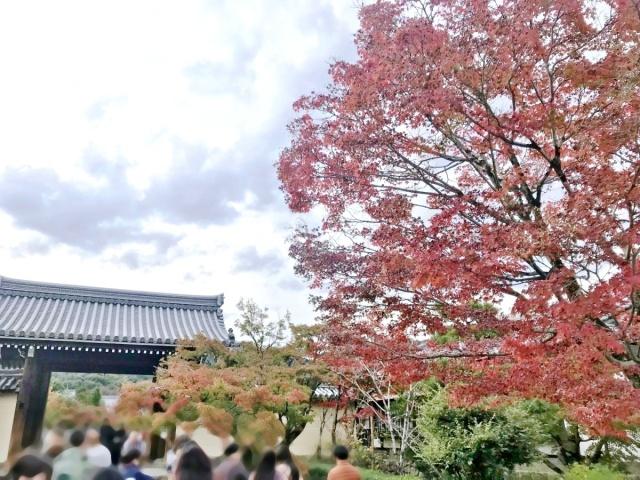京都 嵐山 (5)