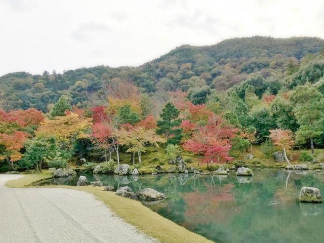 京都 嵐山 (11)